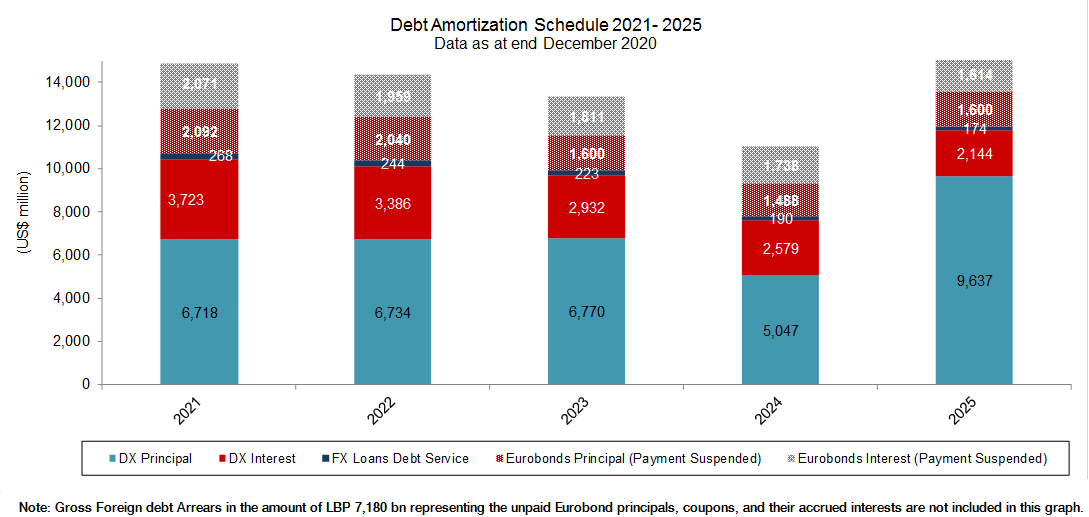Debt Amortization (5 years)